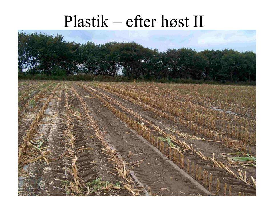 Plastik – efter høst II