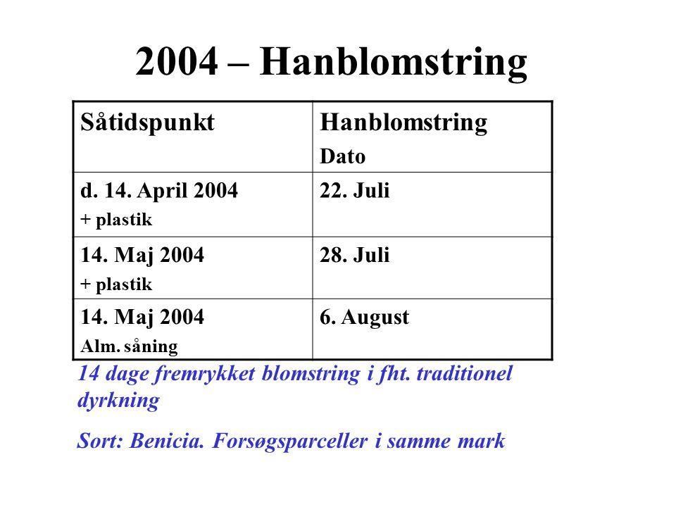 2004 – Hanblomstring Såtidspunkt Hanblomstring Dato d. 14. April 2004