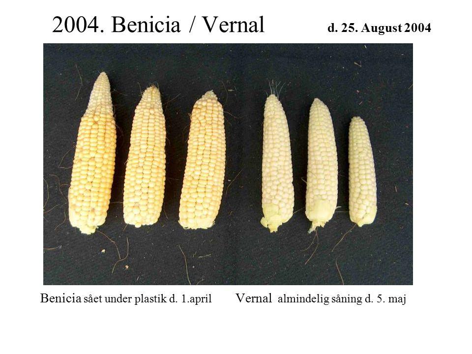 2004. Benicia / Vernal d. 25. August 2004