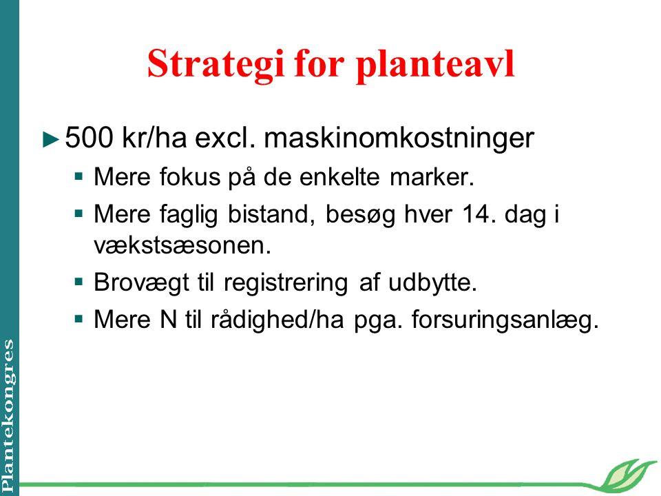 Strategi for planteavl