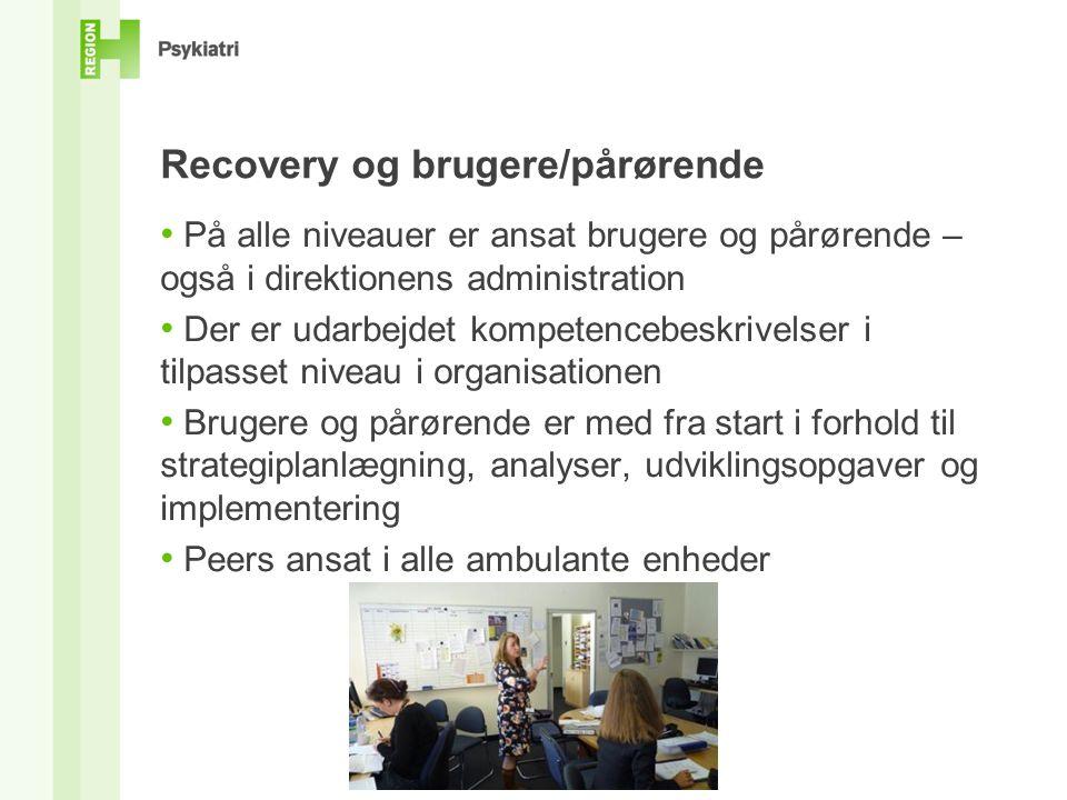 Recovery og brugere/pårørende