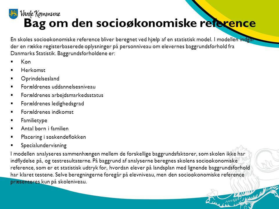 Bag om den socioøkonomiske reference