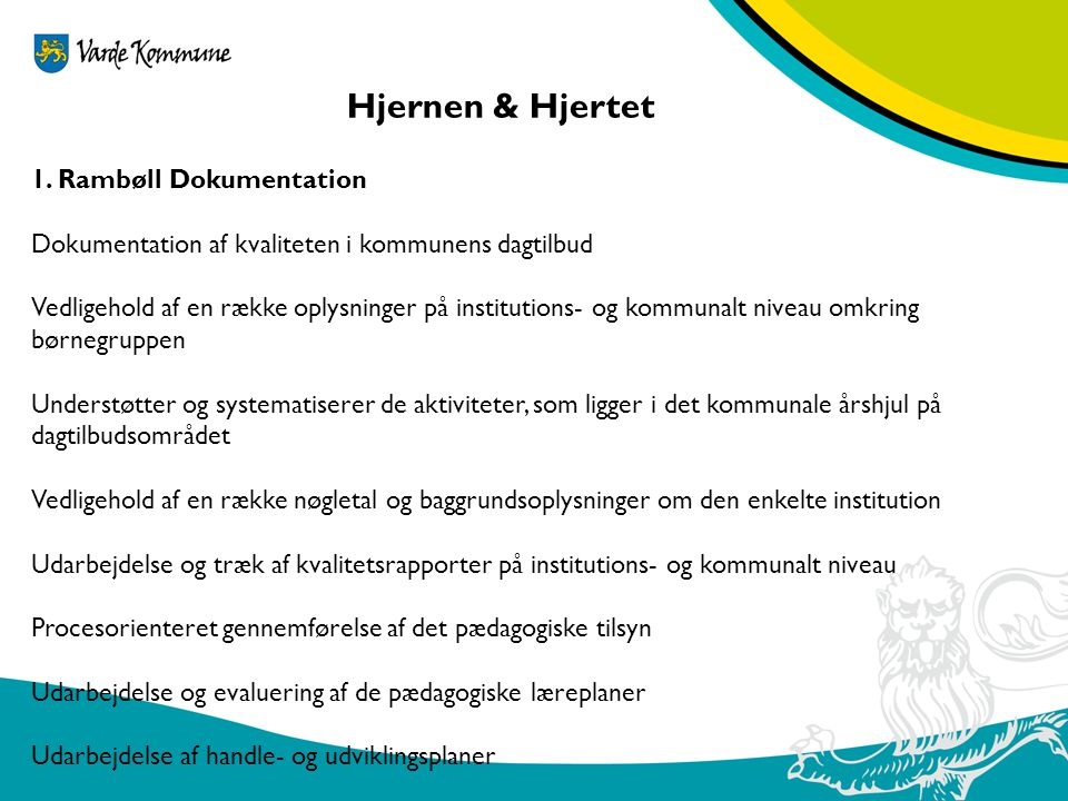 Hjernen & Hjertet 1. Rambøll Dokumentation