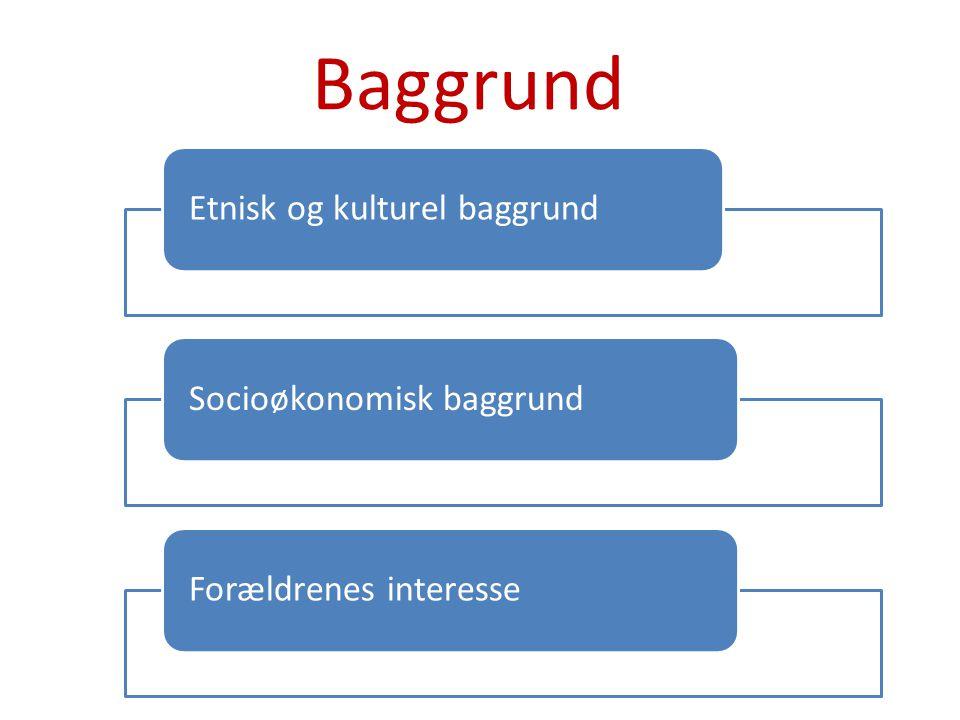 Baggrund Etnisk og kulturel baggrund Socioøkonomisk baggrund