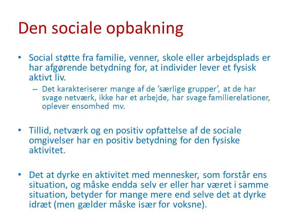 Den sociale opbakning