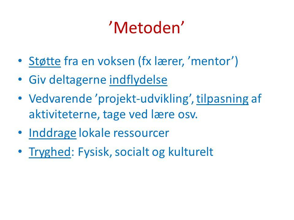 'Metoden' Støtte fra en voksen (fx lærer, 'mentor')