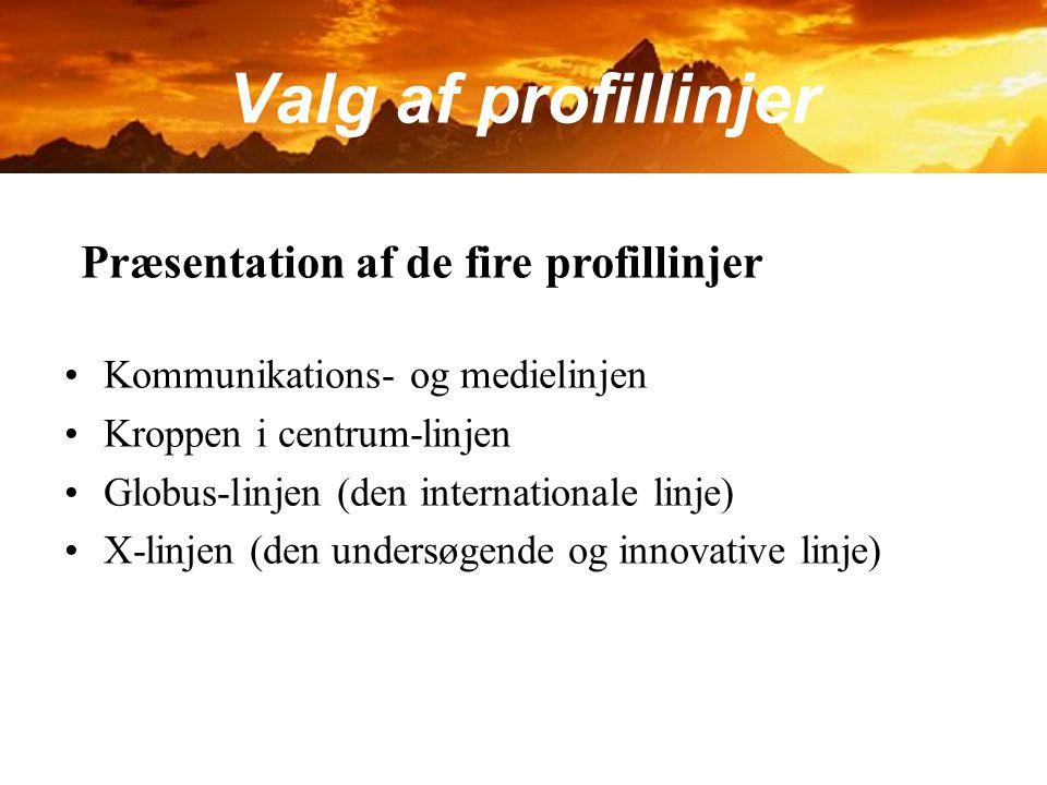 Valg af profillinjer Præsentation af de fire profillinjer