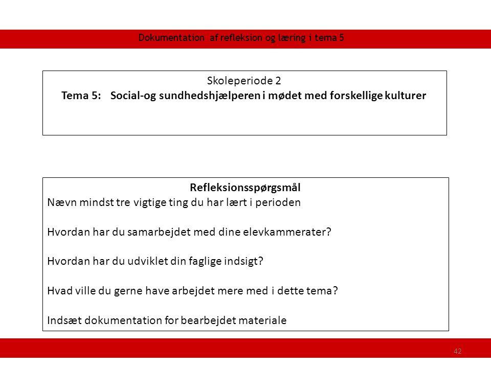Tema 5: Social-og sundhedshjælperen i mødet med forskellige kulturer
