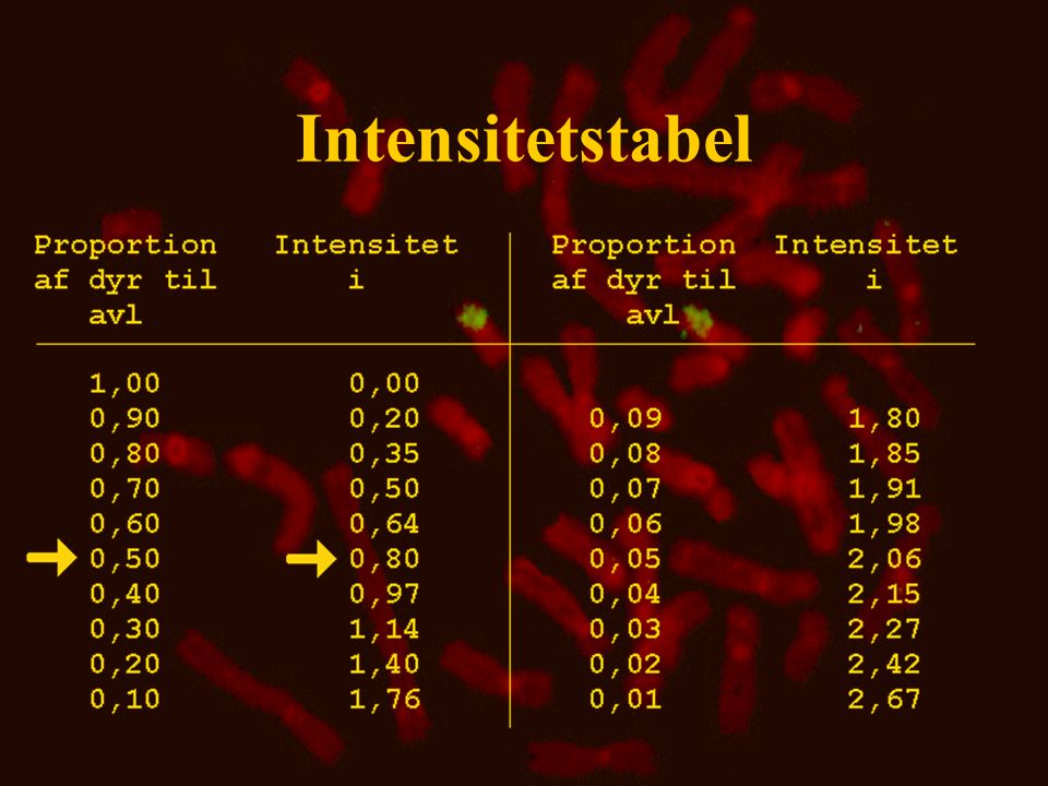 Intensitetstabel