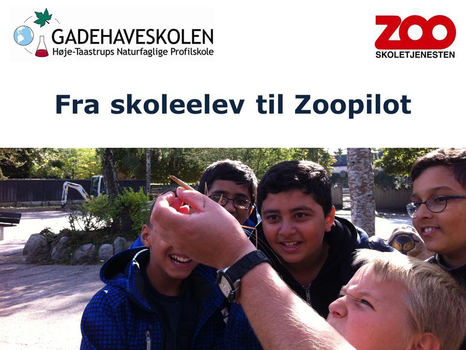 Fra skoleelev til Zoopilot