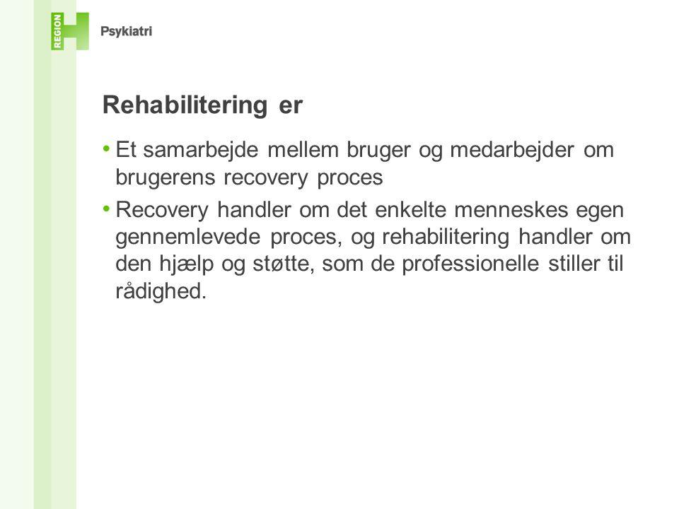 Rehabilitering er Et samarbejde mellem bruger og medarbejder om brugerens recovery proces.