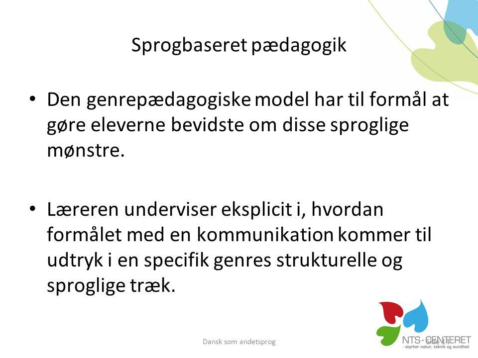 Sprogbaseret pædagogik