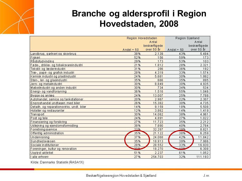 Branche og aldersprofil i Region Hovedstaden, 2008