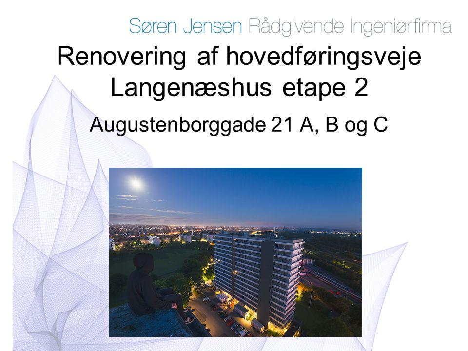 Renovering af hovedføringsveje Langenæshus etape 2