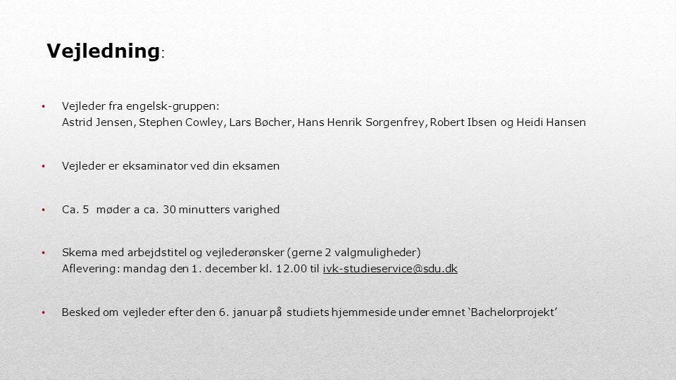 Vejledning: Vejleder fra engelsk-gruppen: Astrid Jensen, Stephen Cowley, Lars Bøcher, Hans Henrik Sorgenfrey, Robert Ibsen og Heidi Hansen.