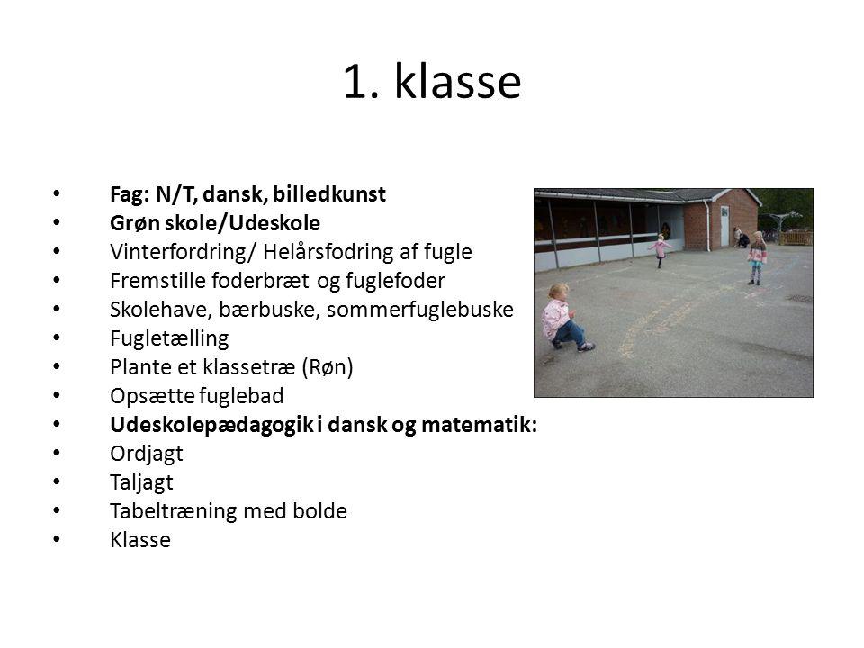 1. klasse Fag: N/T, dansk, billedkunst Grøn skole/Udeskole