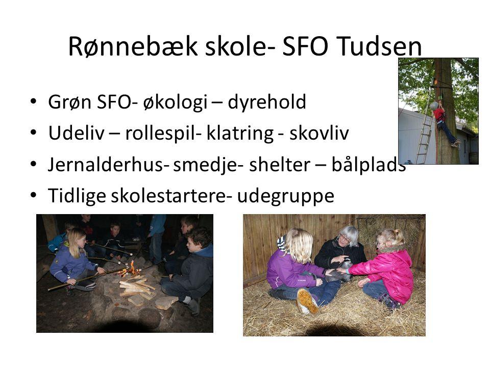 Rønnebæk skole- SFO Tudsen