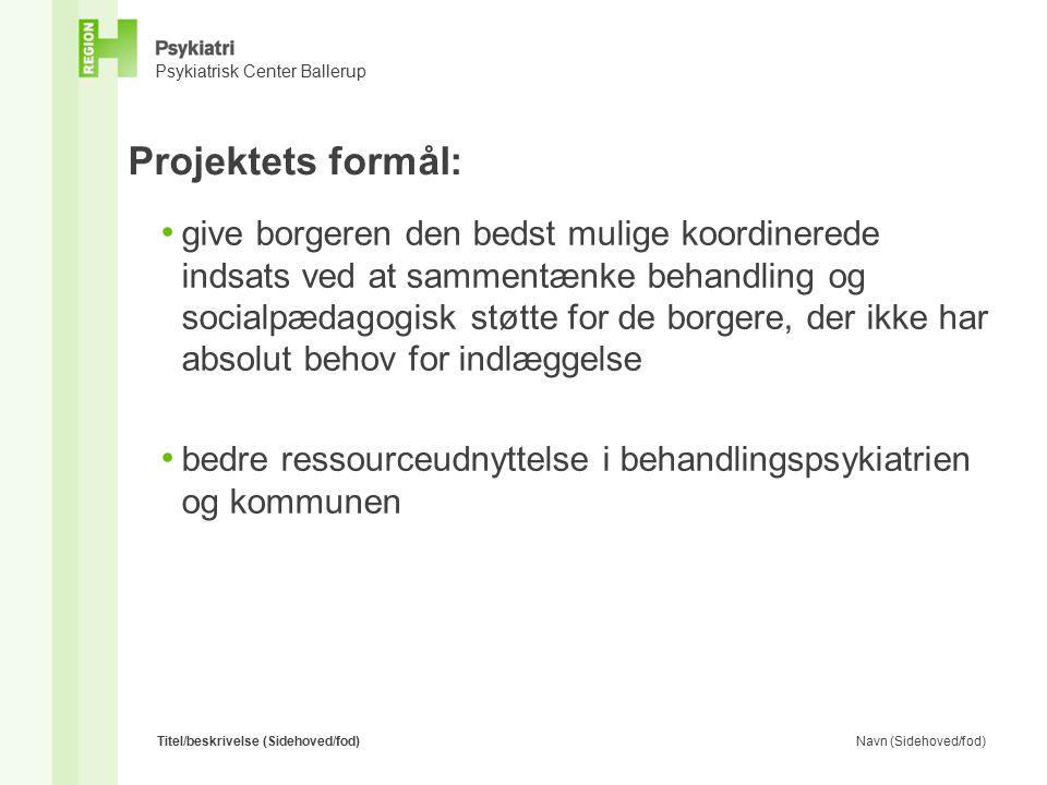 Projektets formål: