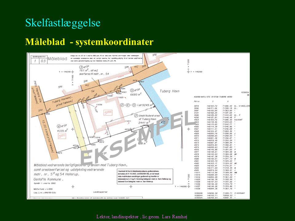 Skelfastlæggelse Måleblad - systemkoordinater