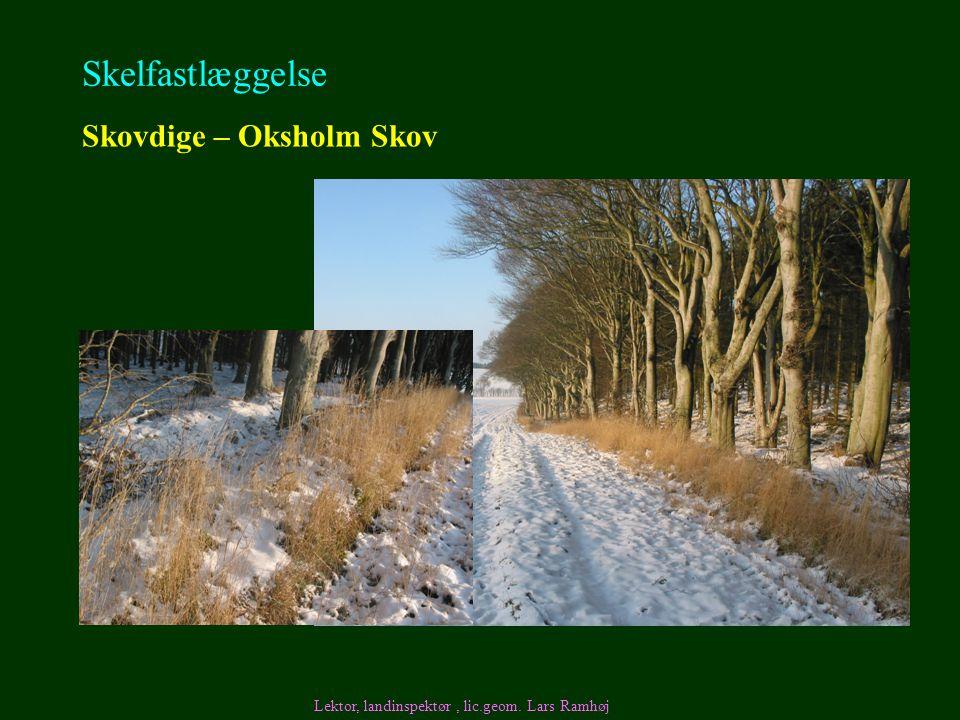 Skelfastlæggelse Skovdige – Oksholm Skov