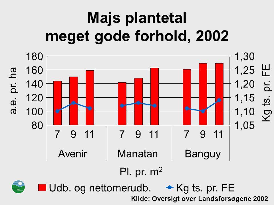 Majs plantetal meget gode forhold, 2002