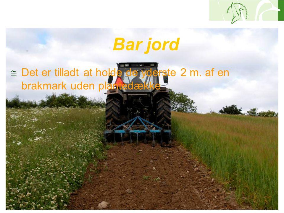 Bar jord Det er tilladt at holde de yderste 2 m. af en brakmark uden plantedække