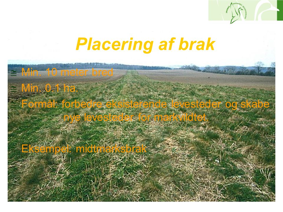 Placering af brak Min. 10 meter bred Min. 0.1 ha.