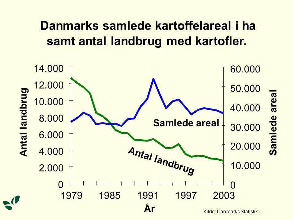 Danmarks samlede kartoffelareal i ha