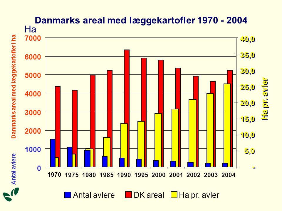 Danmarks areal med læggekartofler 1970 - 2004 Ha