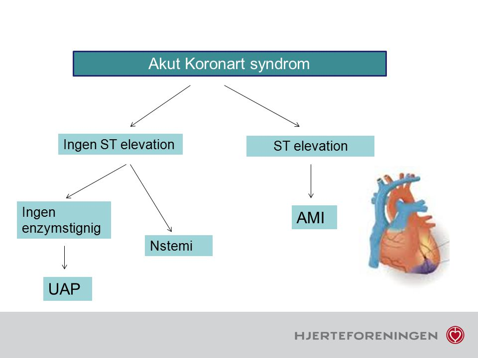 Akut Koronart syndrom AMI UAP Ingen ST elevation ST elevation