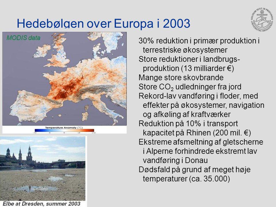 Hedebølgen over Europa i 2003