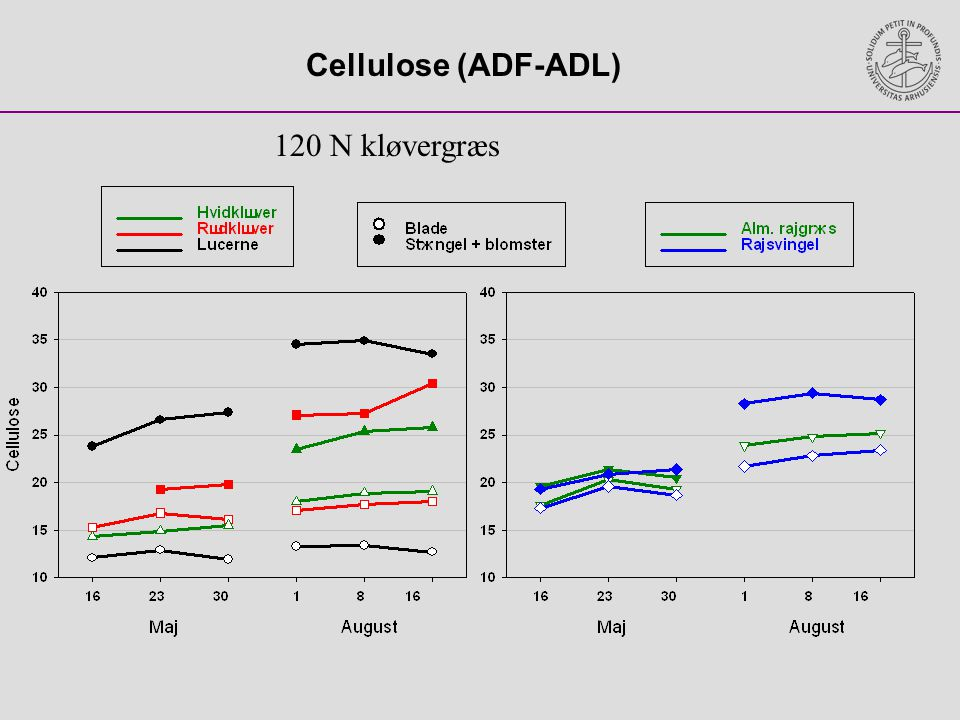 Cellulose (ADF-ADL) 120 N kløvergræs