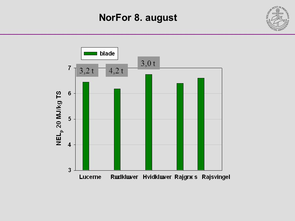 NorFor 8. august 3,2 t 3,0 t 4,2 t
