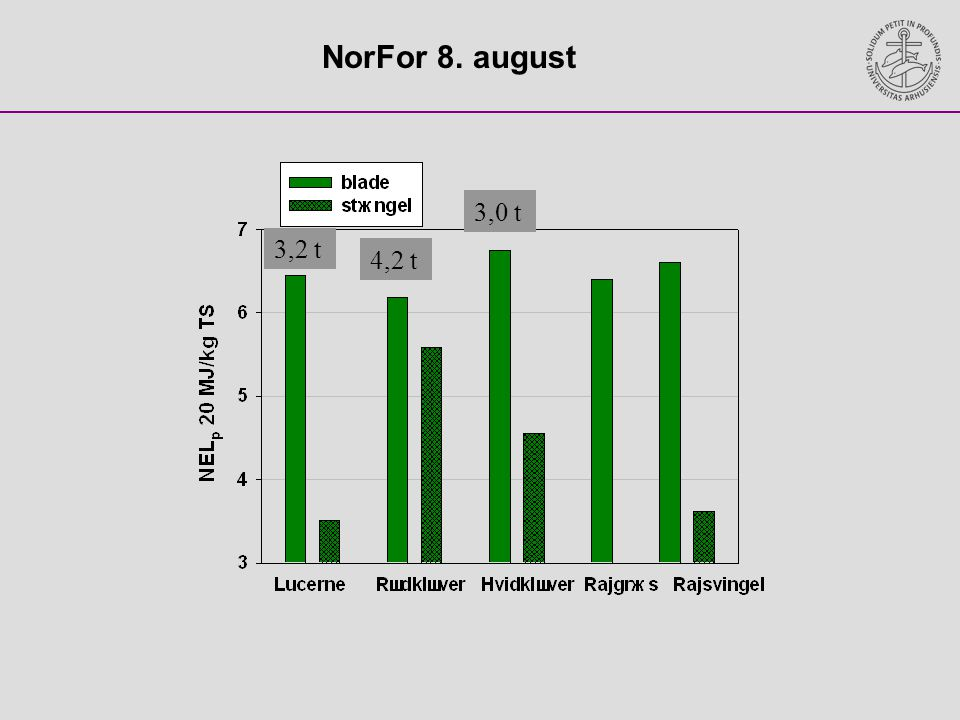 NorFor 8. august 3,0 t 3,2 t 4,2 t