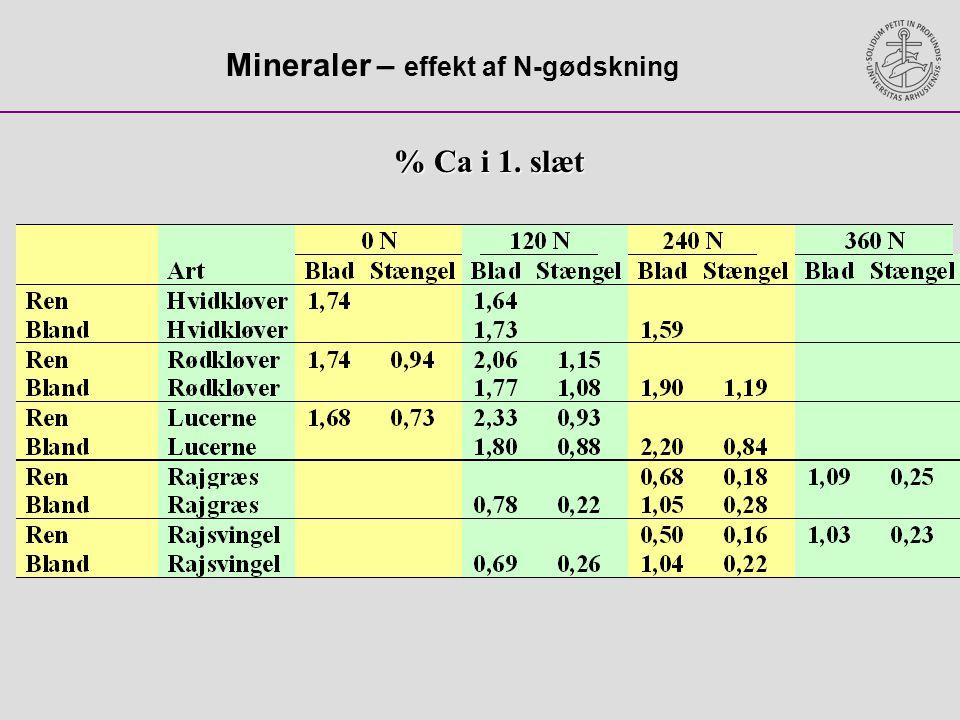 Mineraler – effekt af N-gødskning