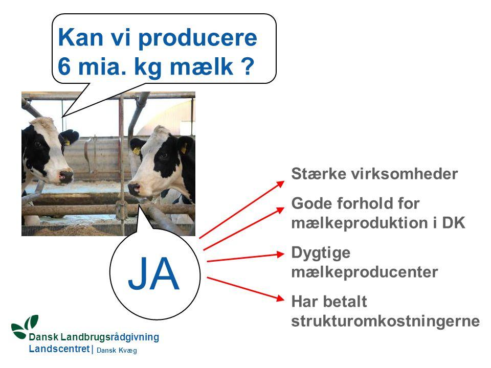 Kan vi producere 6 mia. kg mælk