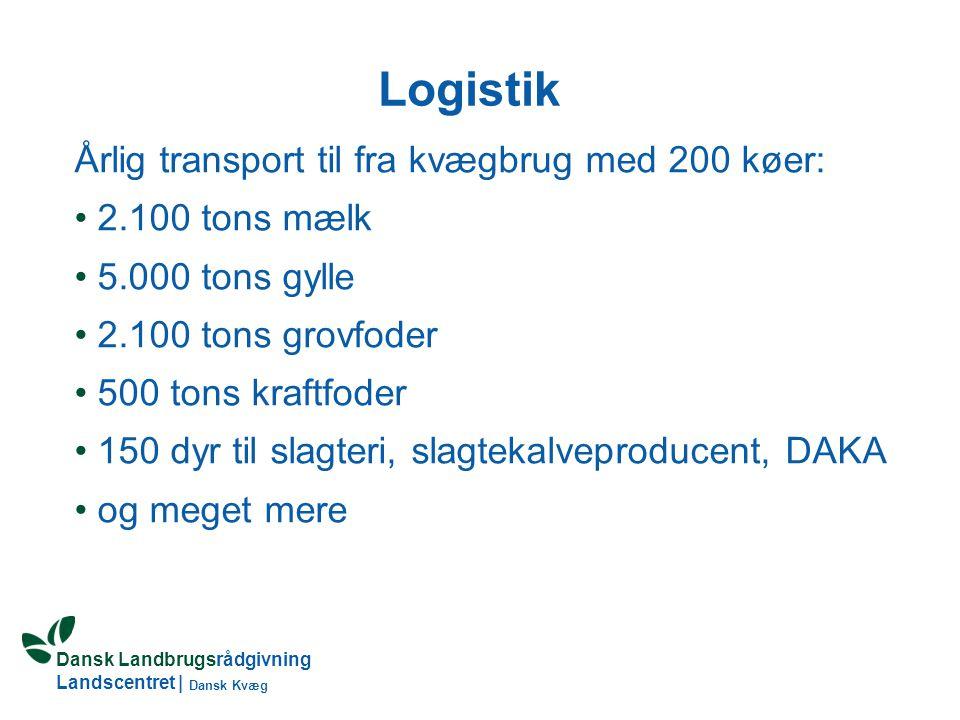 Logistik Årlig transport til fra kvægbrug med 200 køer:
