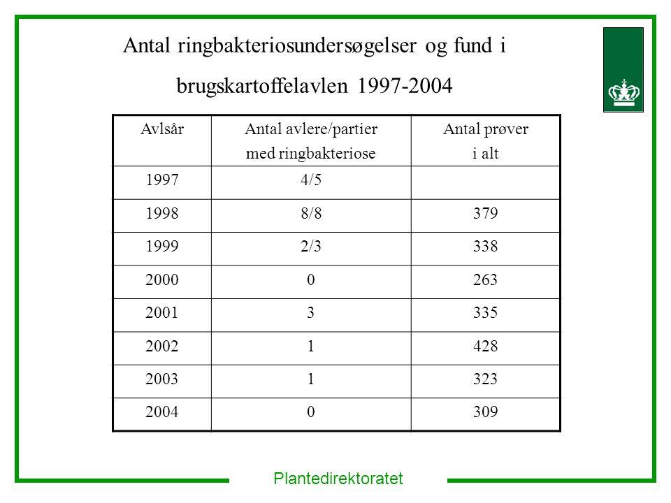 Antal ringbakteriosundersøgelser og fund i