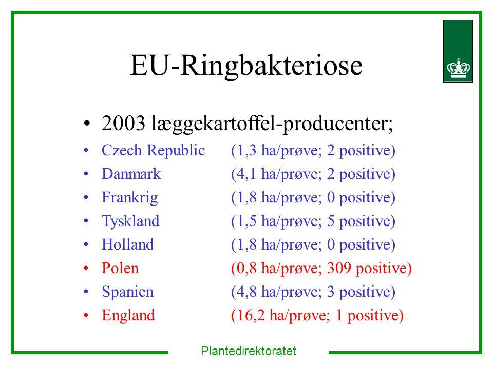EU-Ringbakteriose 2003 læggekartoffel-producenter;