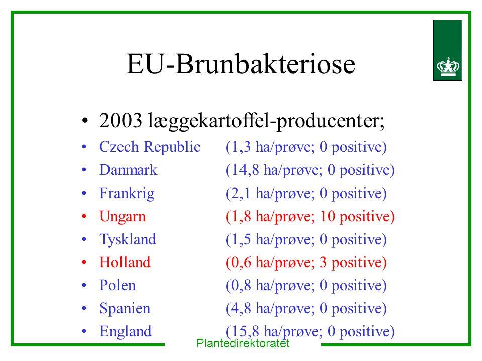 EU-Brunbakteriose 2003 læggekartoffel-producenter;