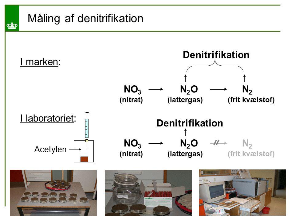 Måling af denitrifikation