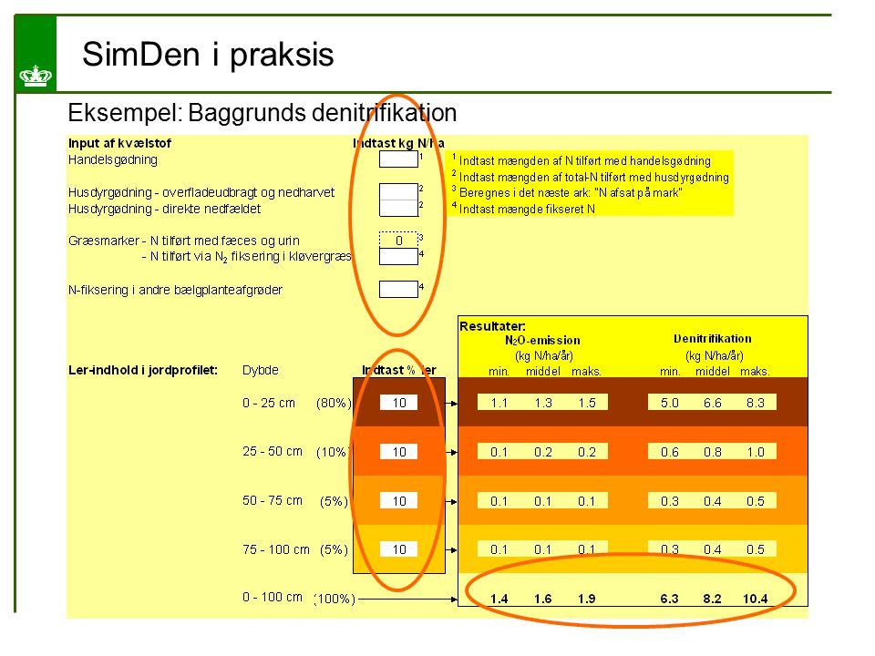 SimDen i praksis Eksempel: Baggrunds denitrifikation