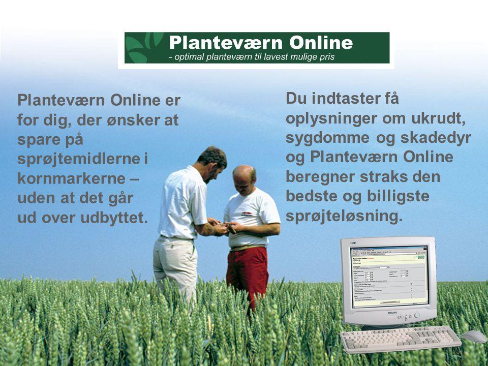 Planteværn Online er for dig, der ønsker at spare på sprøjtemidlerne i kornmarkerne – uden at det går ud over udbyttet.