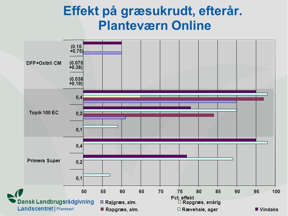 Effekt på græsukrudt, efterår. Planteværn Online