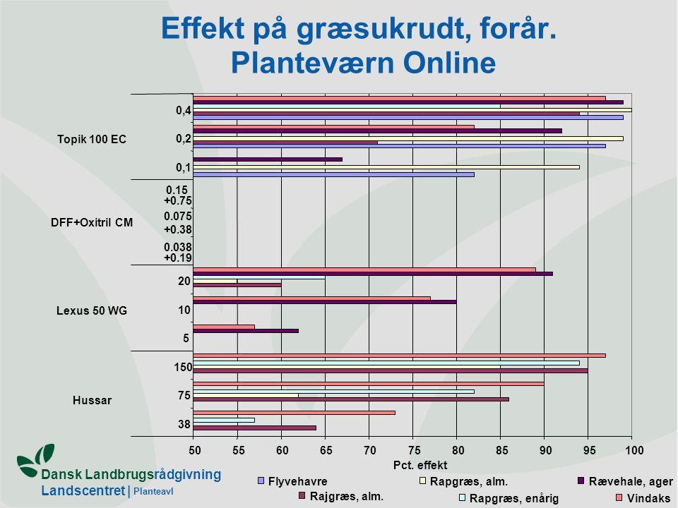 Effekt på græsukrudt, forår. Planteværn Online
