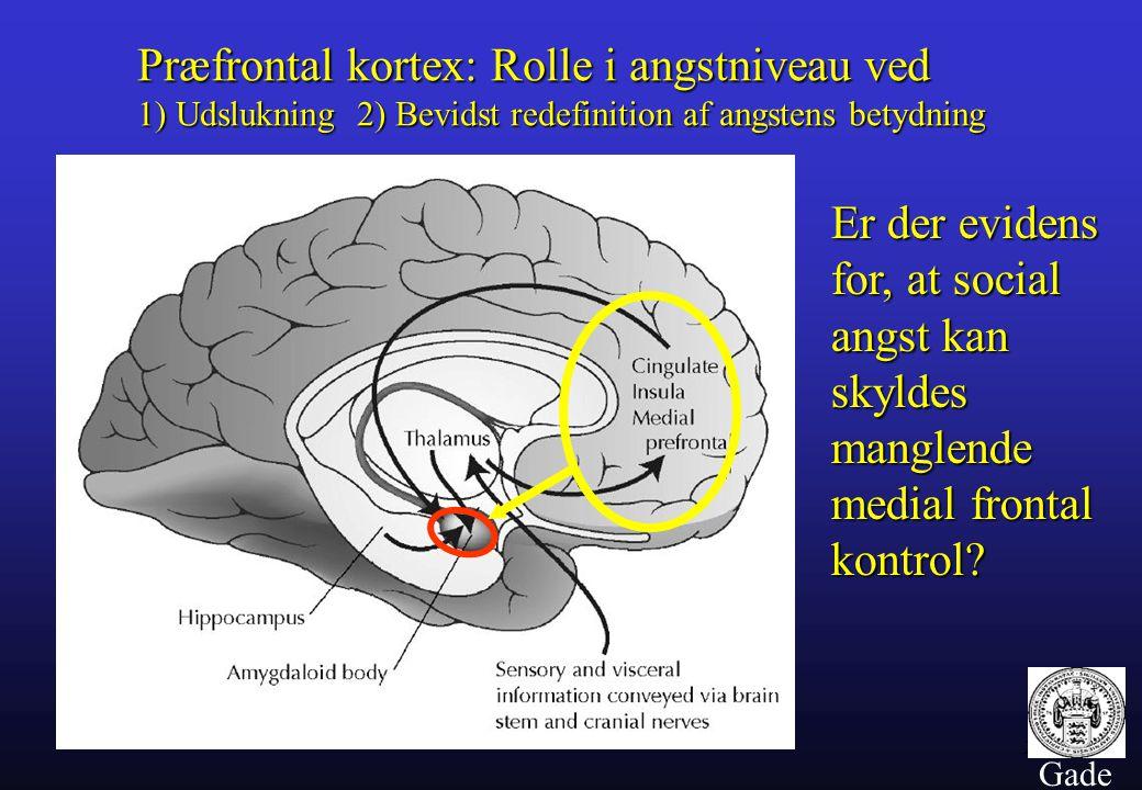 Præfrontal kortex: Rolle i angstniveau ved 1) Udslukning 2) Bevidst redefinition af angstens betydning