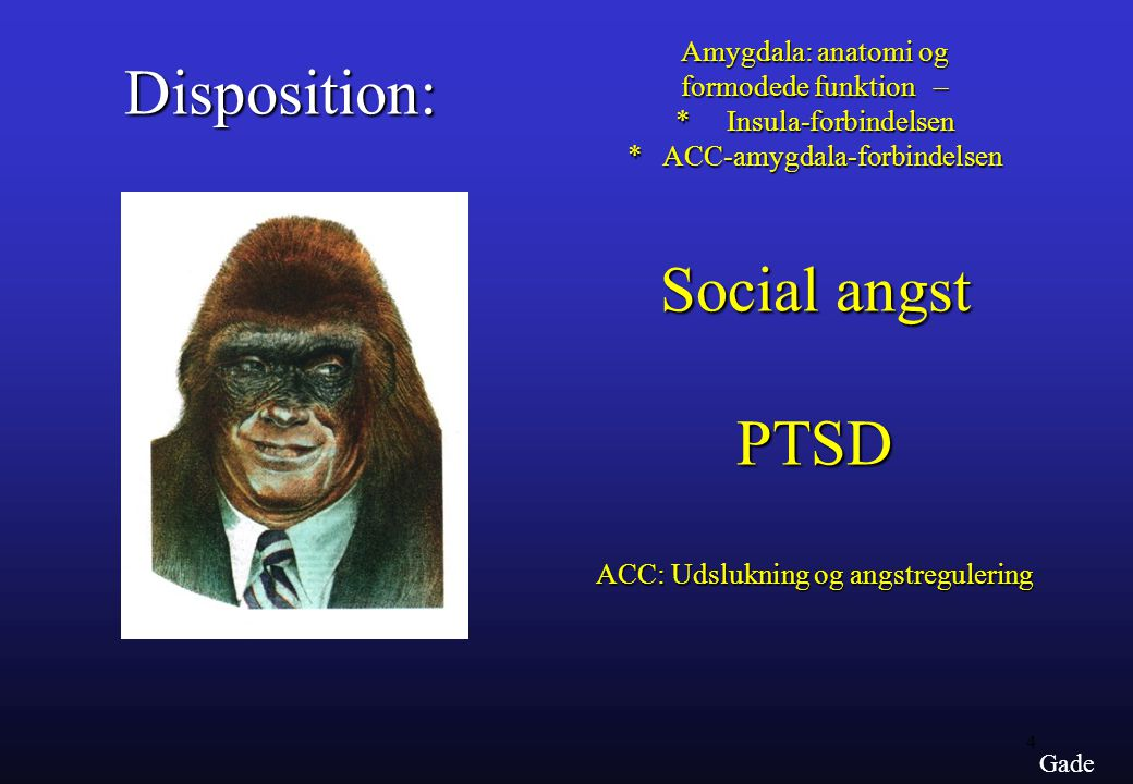 Disposition: Social angst PTSD