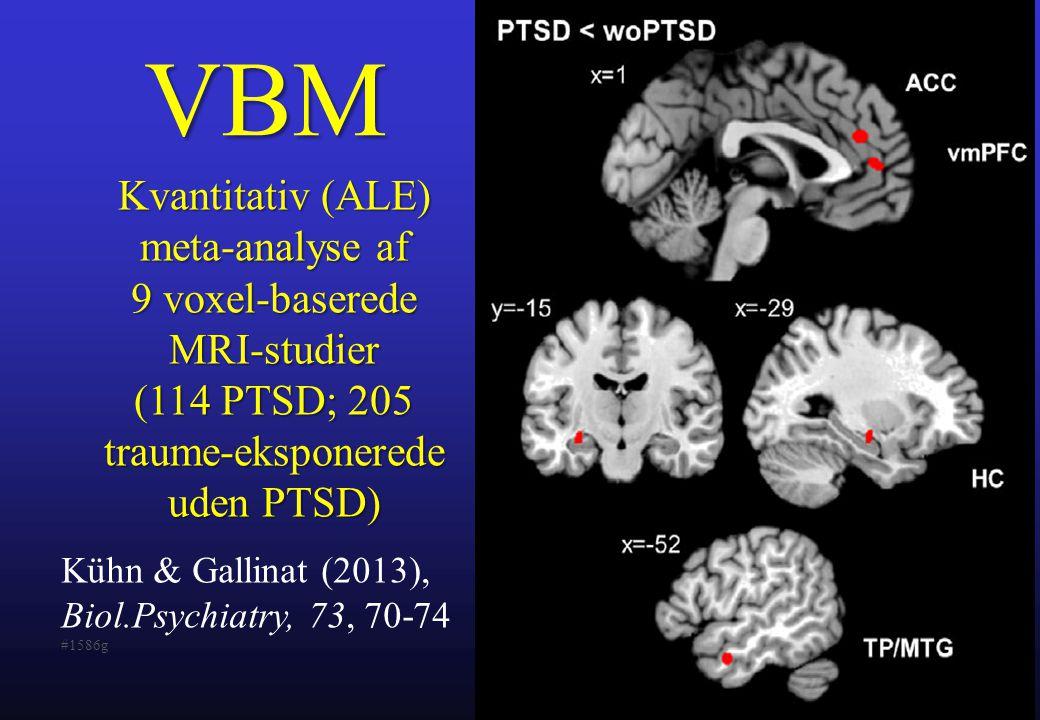 VBM Kvantitativ (ALE) meta-analyse af 9 voxel-baserede MRI-studier (114 PTSD; 205 traume-eksponerede uden PTSD)