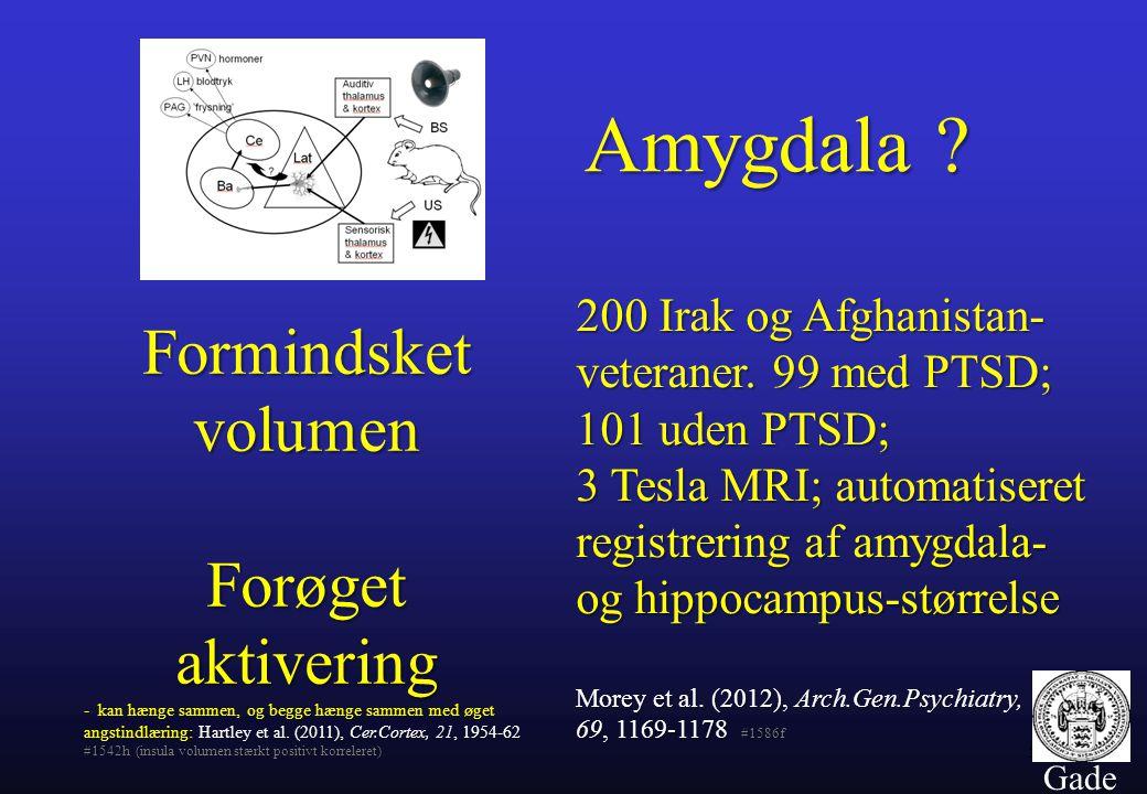 Amygdala Formindsket volumen Forøget aktivering