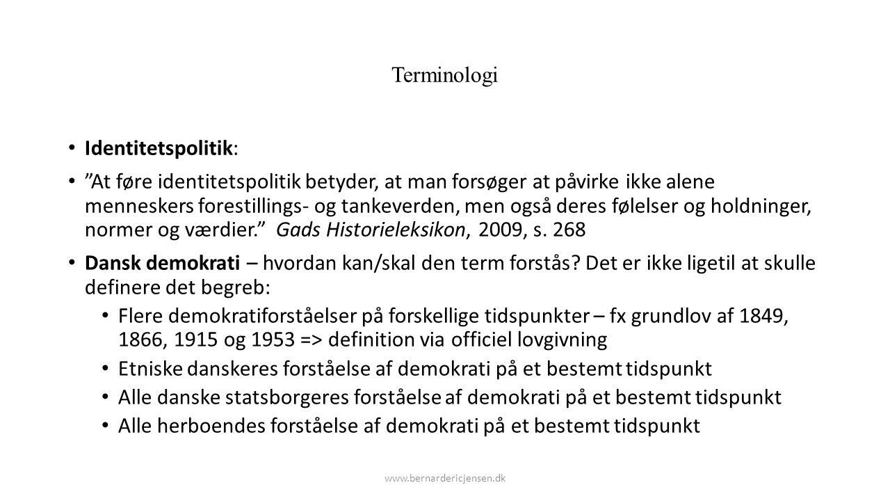 Etniske danskeres forståelse af demokrati på et bestemt tidspunkt